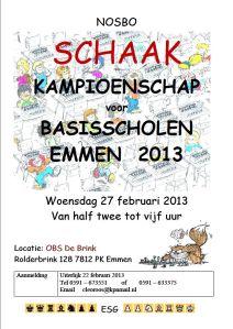 Poster BSK2013