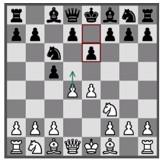 arjen chessfestival 1