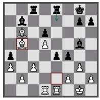arjen chessfestival 3